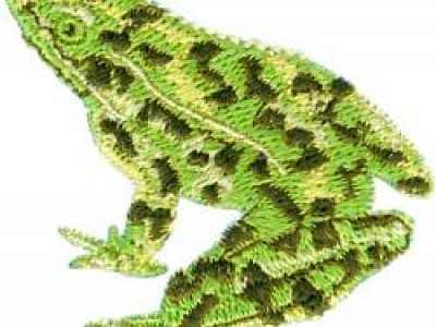 Fred the Frog Free Embroidery Design