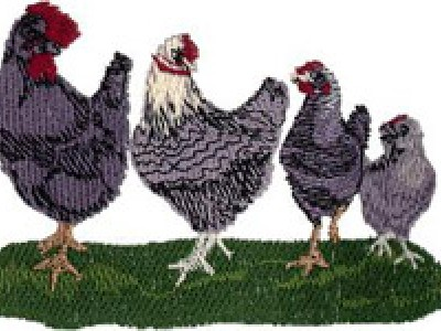 Chickenary Row Free Embroidery Design