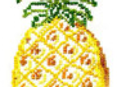 Cross-Stitched Pineapple Free Embroidery Design